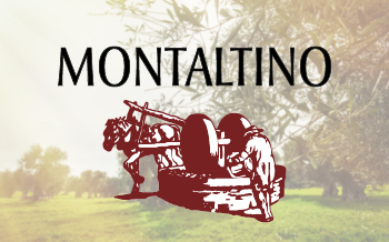 montaltino